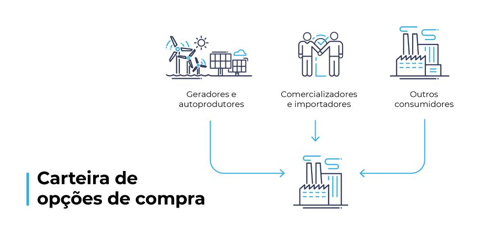 geradores, autoprodutores, comercializadores, importadores, outros consumidores